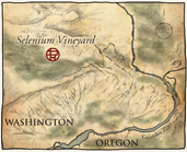 Selenium Vineyard Map